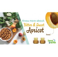 What is Apricot Kernel?