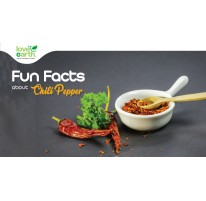 Fun Facts About Chili Pepper