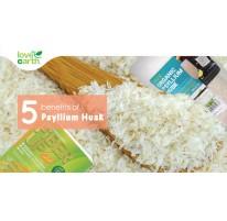 5 Benefits of Psyllium Husk